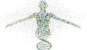 גנים וגאוט, איור של דמות כ DNA